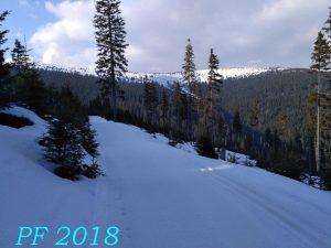 PF 2018 Kolečkové lyže TOMSKI